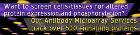 Want to screen cells/tissues for altered protein expression and phosphorylation?